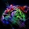 Аватар пользователя Vlad57